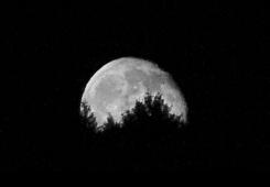 Prvi put u 70 godina: Noćas na nebu potražite Supermjesec