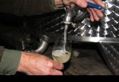 Uvodi se jednaka kontrola za uvezena vina u rinfuzi kao za domaća