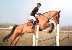 Prvi puta Čakovec ima prvakinju u konjičkom sportu - Taru Damjan!