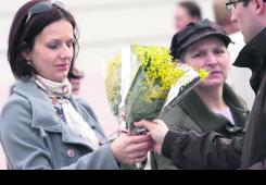 Cvijetom mimoze za borbu protiv raka vrata maternice