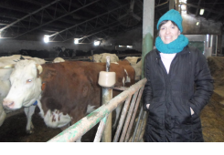 Nema zime za muzne kravice obitelji Ilijaš iz Zebanca